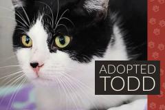 Todd-Adopted-on-May-25-2019